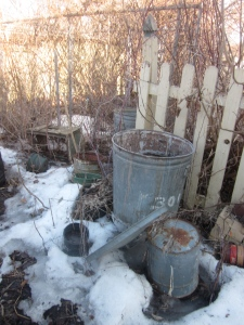 One of the many frozen piles of pails, fencing, and overgrown plants.