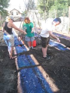 Seeding the prepped beds--notice the beginning of the willow thicket?