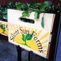 Silent Sun box